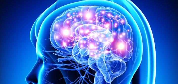 Pubertät Baustelle Gehirn